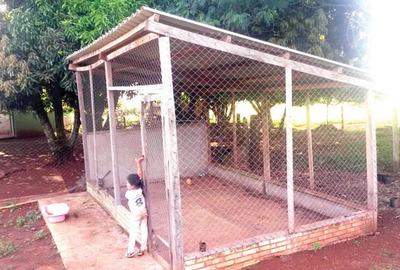 Concejales denuncian construcción de  gallinero de oro  en Alto Paraná
