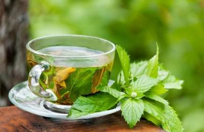 Descubre tratamiento de té verde para el síndrome de Down