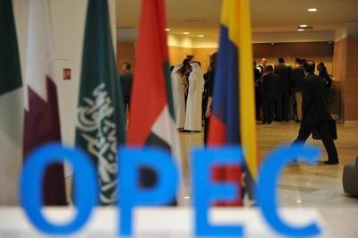 Incertidumbre en OPEP hace caer precio del petróleo