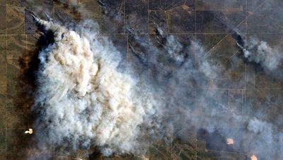 Incendios en La Pampa ya arrasaron 600.000 hectáreas