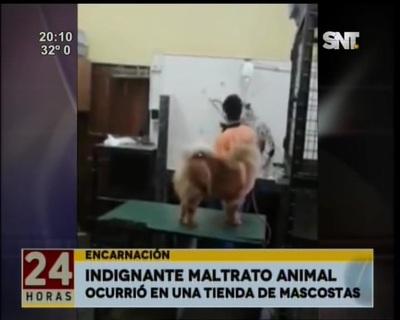 Brutal maltrato animal en tienda de mascotas en Encarnación