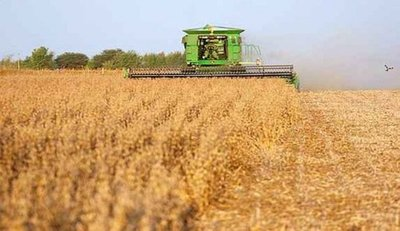 Prevén que el 2017 sea el año record en producción de soja