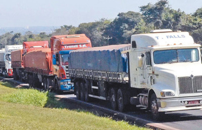 Miles de toneladas de maíz y trigo siguen stockeadas