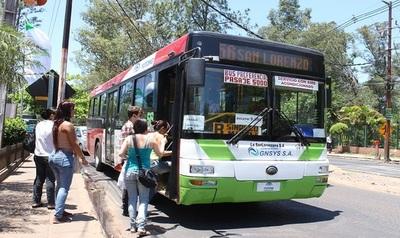 Las empresas de transporte público siguen renovando flota de vehículos