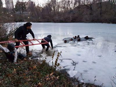 Turistas paraguayos salvan a 7 niños en NY