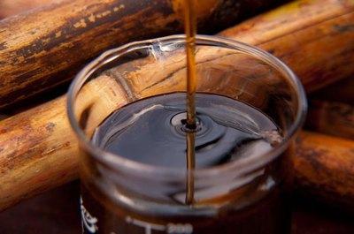 La dulce miel paraguaya comienza a ganar al mercado español