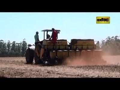 80 mil pequeños productores podrán pedir préstamo