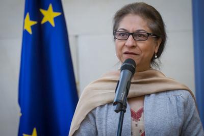 Relatora de la ONU denuncia elevado número de ejecuciones de menores en Irán