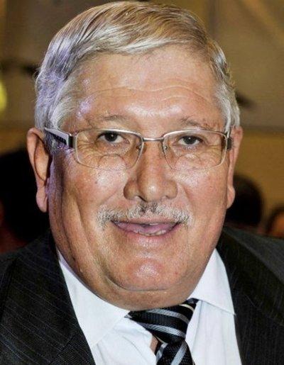Urgirán informes concejales sospechosos de apañar a Ferrer