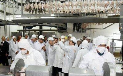 Urgen a Cartes a parar el contrabando de pollos