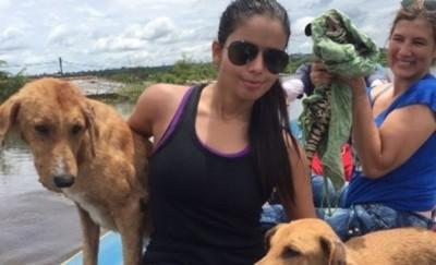 Jessi Franco Opina Sobre La Aprobación De La Ley Contra El Maltrato Animal