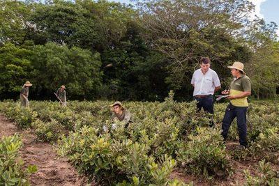 Santa Margarita SA: Legado guaraní que rompió los paradigmas
