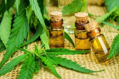 Salud pública autoriza el uso medicinal del  aceite de marihuana