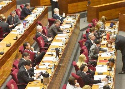 Puja en el Senado definirá sucesión de Cartes