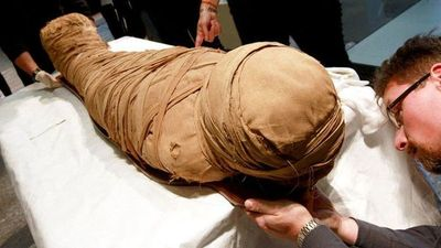 ADN de momias muestra poca relación de los egipcios actuales con los faraones