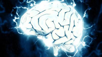 ¿Cuál es el secreto de la inteligencia?