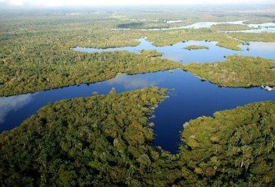 Brasil editará decreto que abre una reserva amazónica a la minería
