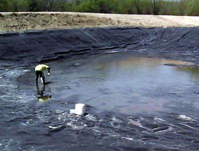 Sequía en el Chaco genera problemas