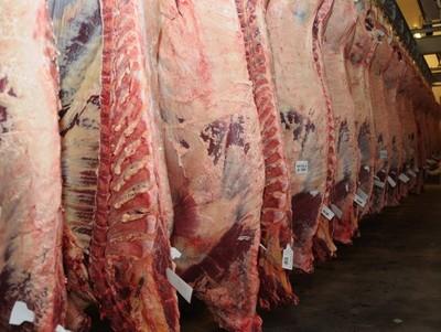 Paraguay aumentó colocaciones de carne a Chile un 25% respecto al 2016