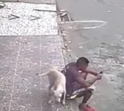 Dejó a un lado las burlas y terminó adoptando al perro que le orinó