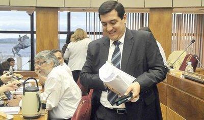 Cardozo va al Consejo de la Magistratura y Oviedo Matto a Jurado de Enjuiciamiento