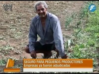 Seguro agrícola para pequeños productores