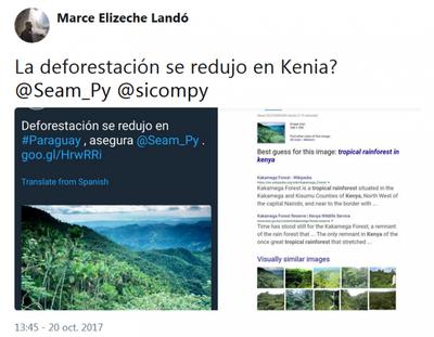 Polémica foto en tuit sobre deforestación