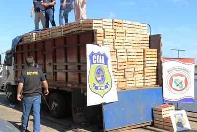 Decomisan más de 7 toneladas de tomate tras control en Caacupé