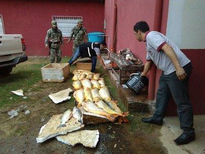 Decomisan 500 kilos de pescado