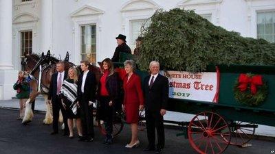 Melania Trump y su hijo reciben su primer árbol navideño de la Casa Blanca