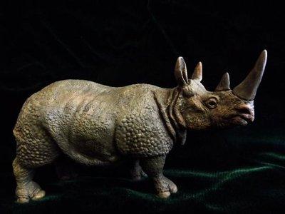 Rinoceronte enseña un clima siberiano similar al actual
