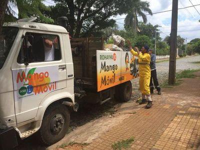 """El """"mango móvil"""" recolectó 1.100 toneladas de la fruta en un mes"""