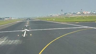 Una vaca obliga a desviar vuelos internacionales de aeropuerto de la India