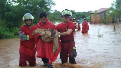 Inundaciones, rescates y árboles caídos