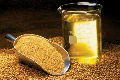 Aceite de Soja tuvo a India como principal cliente