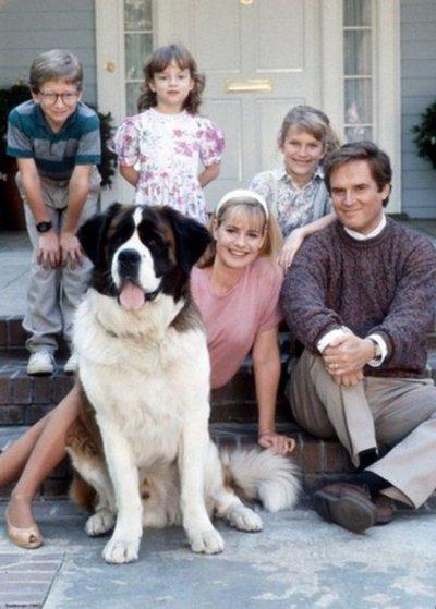 Cuando los perros son protagonistas en películas, sus ladridos derrochan ternura