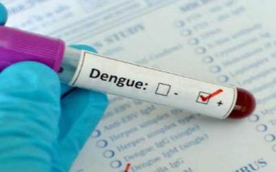 Aclaran que no existe test para detección de dengue de manera inmediata