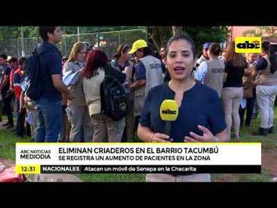 Eliminan criaderos en Tacumbú