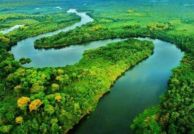 Pantanal, el gran humedal en peligro
