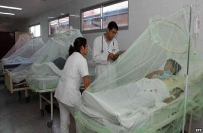 Más de 2 mil casos de dengue confirmados en el año