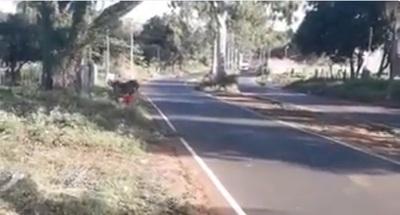 VIDEO: Brutal accidente en carrera clandestina
