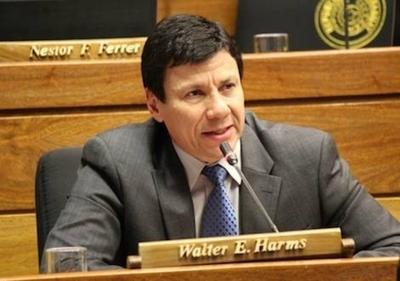 """Harms: """"Honor Colorado debe fijar posición política"""""""
