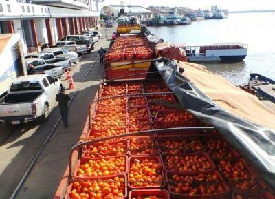 """Los productores piden """"medidas concretas"""" para terminar con el contrabando de tomate"""