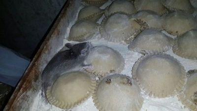 El caso de las 'rataempanadas' ya está en pleno juicio oral