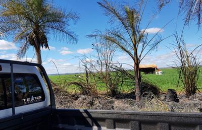 Indígenas vuelven a invadir propiedad de un colono brasileño en Itakyry