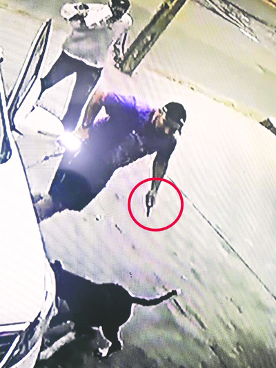 Dueña del pitbull herido asegura que su mascota solo ladró a otros perros