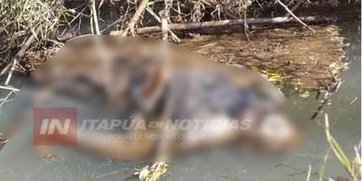 C. A. LOPEZ: HOMBRE FUE EJECUTADO Y TIRADO EN UN ARROYO