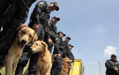 K9: la unidad canina que da protección en las cárceles mexicanas