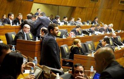 Los diputados blanquearon la caja negra de Yacyretá, opina exsenador