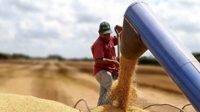 La demanda por soja en el mundo continúa creciendo y las perspectivas de largo plazo son buenas